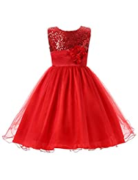 Csbks Little Girls Flower Sequin Princess Tulle Party Dress Birthday Ball Gowns