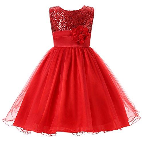 Csbks Little Girl Flower Sequin Princess Tulle Party Dress Birthday Ball Gowns 6 (Holiday Dresses For Toddler Girl)