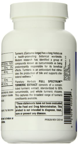 41DYEzbMCOL - Planetary Herbals Full Spectrum Turmeric Extract Tablets, 450 mg, 120 Count