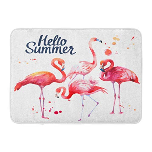 - Emvency Doormats Bath Rugs Outdoor/Indoor Door Mat Abstract Watercolor Pink Flamingo on Tropical Bird Paradise Animal Artistic Bathroom Decor Rug 16
