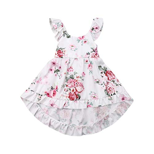 Toddler Baby Girls Summer Outfit Clothes Fly Sleeve Vintage Floral Print Ruffle Rim Skirt Sundress Boho Dress (6-12M, Pink)