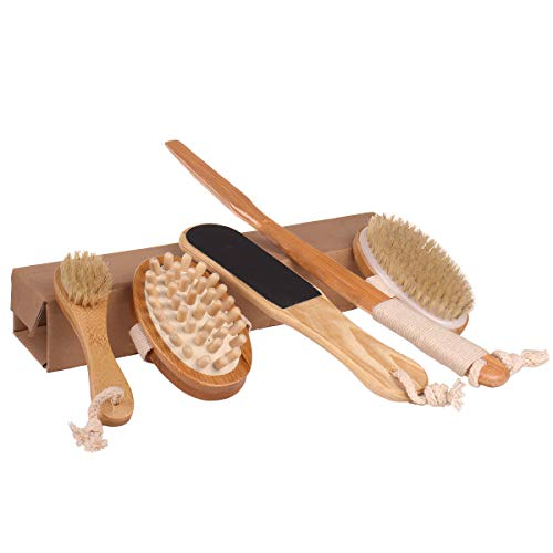 Dry Brushing Body Brush - Stiff Natural Boar Bristle Face/Back/Foot Cactus Skin Brush Scrubber for Exfoliation, Cellulite, Circulation, Drain Lymph Massage in Bath Shower - Long Detachable Handle