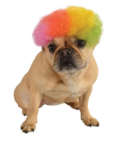Clown Costume For Dogs (Rubie's Wig for Pets, Medium to Large, Rainbow)