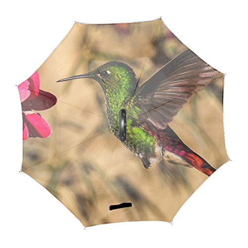 Green Colibri Bird Large Inverted Double Layer Reverse Folding Umbrella - Windproof, UV Protection, C-Shape Hands-Free Handle for Car Rain Sun
