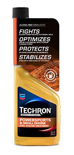 TECHRON 266707338 Protection Plus Powersports & Small Engine Fuel System Treatment, 10oz, 10. Fluid_Ounces
