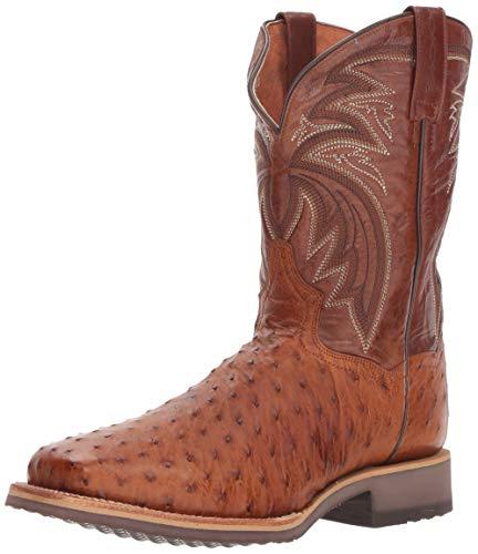 Dan Post Western Boots Men Ostrich Philsgood 10.5 EW Bay Apache DP3985 Brown
