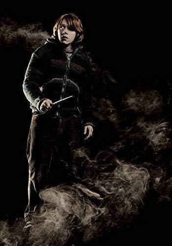 Desconocido Harry Potter & The Copa de Fuego Ron Weasley ...