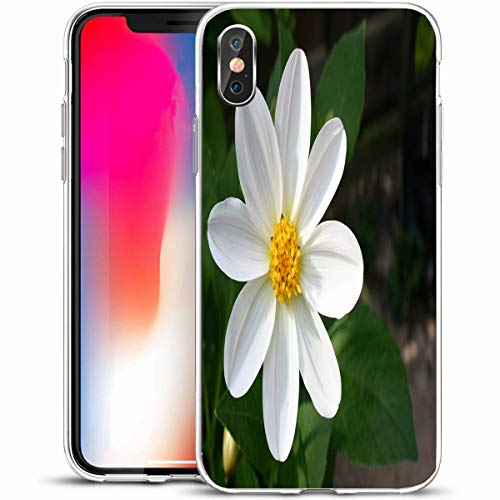 (LifeCO Custom Phone Case Cover for iPhone X/XS 5.8