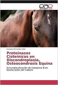 Proteinasas Cisteínicas en Discondroplasia, Osteocondrosis Equina ...