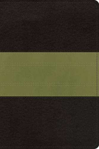 ESV Study Bible, Personal Size (TruTone, Charcoal/Sage, Trail Design)