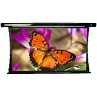 Elite Screens CineTension2, 92-inch 16:9, Tab-Tensioned Electric Drop Rear Projection Projector Screen, TE92HR2