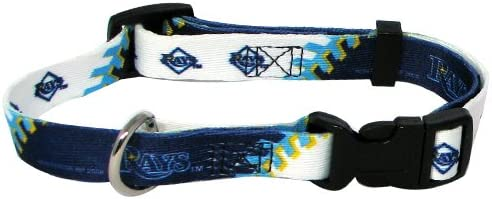B0002DGNQA Hunter MFG Tampa Bay Rays Dog Collar, Small 41DZ2dtJQ2BL