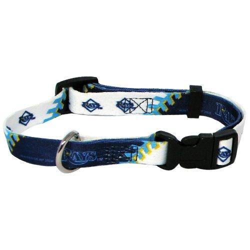 Hunter MFG Tampa Bay Rays Dog Collar, Extra Large