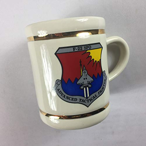 F-22 SPO Mug Vintage Stein Advanced Tactical Fighter Jet USA Made Drink Cup Gold