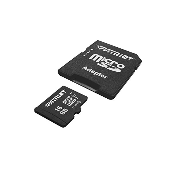 Patriot LX Series 256GB High Speed Micro SDXC Class 10 UHS 1 Transfer Speeds For Action Cameras Phones Tablets And PCs