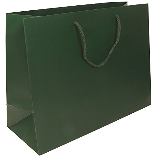 JAM Paper Gift Bag - Large Horizontal - 16