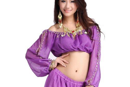 ZLTdream Lady's Belly Dance Long Sleeves Chiffon Top Purple (Top Fancy Dress Costumes)