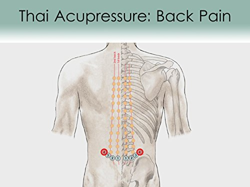 (Treatment Routine 33 - Lower, Middle and Upper Back Pain)