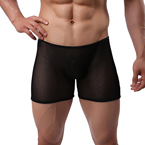 IWEMEK Men's Mesh Sheer Boxer Briefs Underwear Transparent See Through Fishnet Shorts Open Front Pouch Breathable Underpants -