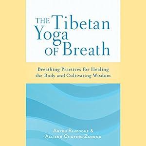 Amazon the tibetan yoga of breath breathing practices for amazon the tibetan yoga of breath breathing practices for healing the body and cultivating wisdom audible audio edition anyen rinpoche fandeluxe Images