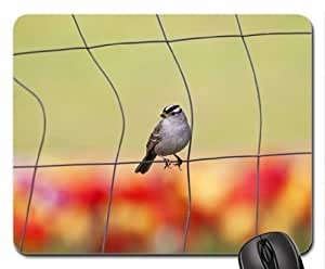 Watching spring Mouse Pad, Mousepad (Birds Mouse Pad)