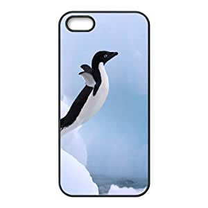 iPhone 5,5S Protective Phone Case penguin ONE1231392