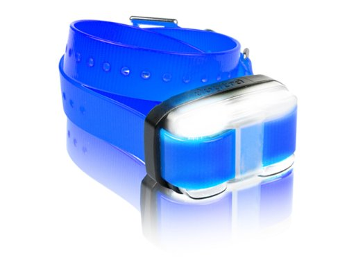Dogtra EDGE Receiver with Blue Strap