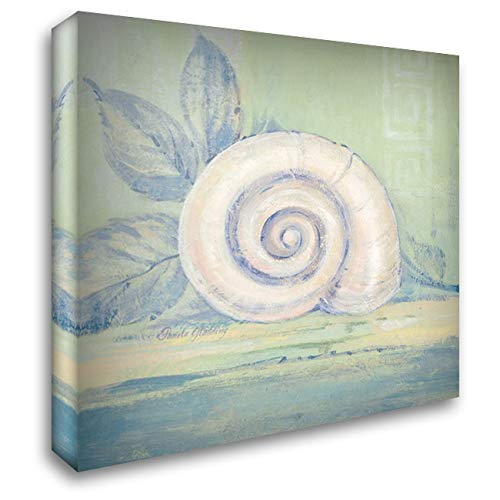 - Tranquil Seashell III 20x20 Gallery Wrapped Stretched Canvas Art by Gladding, Pamela