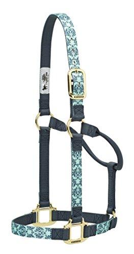 Weaver Leather Damask Non-Adjustable Nylon Horse Halter, Average, Mint/Gray (Nylon Adjustable Horse Halter)