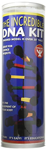 Hygloss Science Build a Model of a DNA Molecule-STEM Kits for Classroom, 1 Set