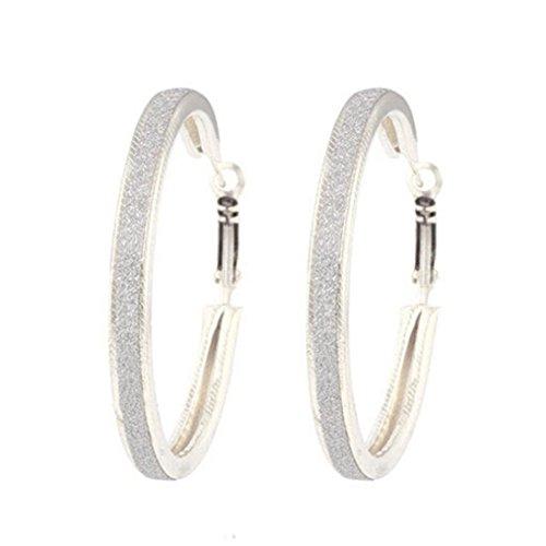 Women Jewelry ,AIMTOPPY 1Pair Women Alloy Grind Arenaceous Annulus Dangle Earings Eardrop Jewelry (Silver, free)