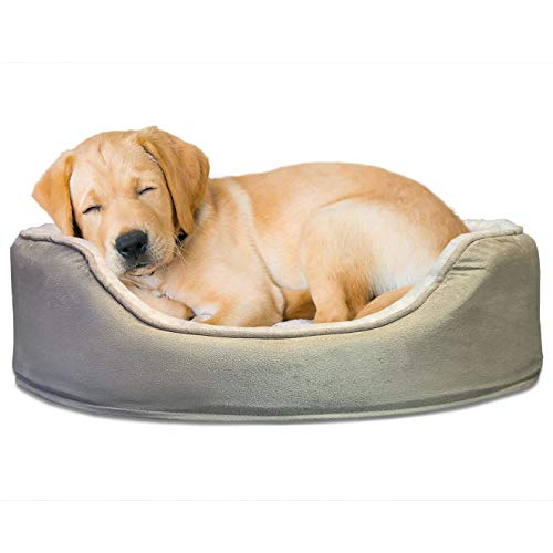 FurHaven Pet Dog Bed | Orthopedic Oval Lounger Pet Bed for Dogs & Cats, Clay, Medium ()