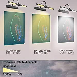 LUXSWAY Picture Light Remote Control Wireless Battery Operated Art Light Timing Auto Off 180 Degree Heads Rotatable LED Painting Light 3 Modes Dimmable Lighting for Artwork/Pictures/Diplomas-Black