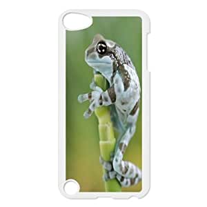 UNI-BEE PHONE CASE FOR Ipod Touch 5 -Frog Pattern-CASE-STYLE 14