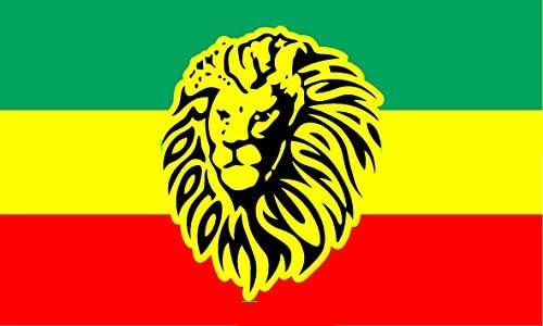 Durabol Bandera de Rastafari Leon Flag 90x150cm Satin: Amazon.es: Hogar