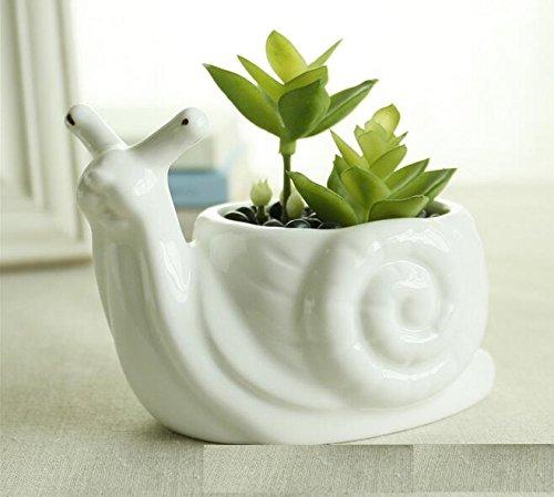 Snail Pot (Youfui Cute Succulent Planter Animal Shaped Flower Pot Decor for Home Office Desk (Snail))