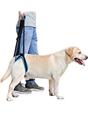 Pet care products Doglemi Dog Back Legs Lift Harness Strap Auxiliary Belt (L),Simple and practical (Size : M)