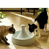 Drw Waterer Fountain 360