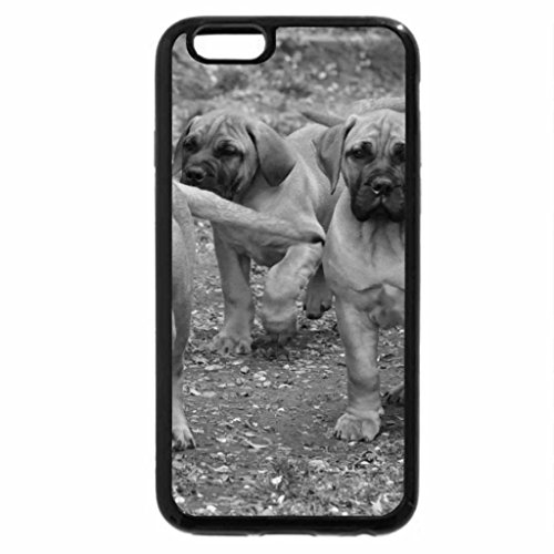 iPhone 6S Plus Case, iPhone 6 Plus Case (Black & White) - there off to see the wizard of oz
