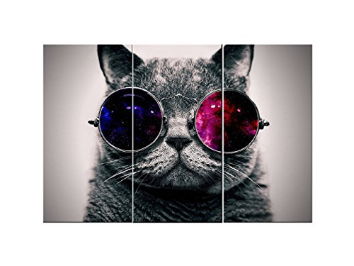 Canvas Wall Art 3 Panels Cut Cat with Glasses Wall Art Canvas Prints Animal Head Pictures Paintings on Canvas Stretched and Framed for Living Room Bedroom Home Decoration