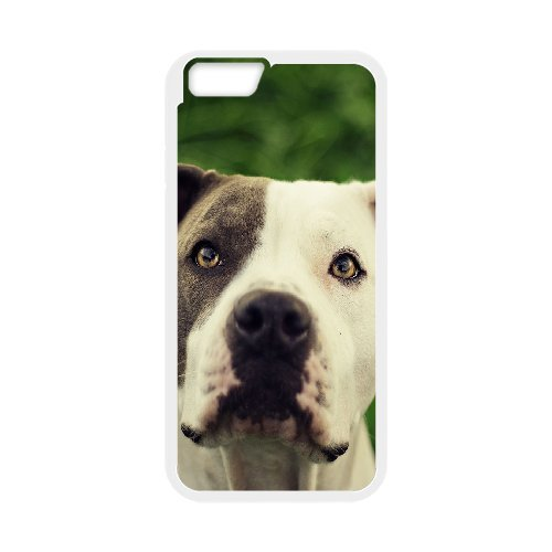 """LP-LG Phone Case Of Pit Bull Terrier For iPhone 6 Plus (5.5"""") [Pattern-5]"""