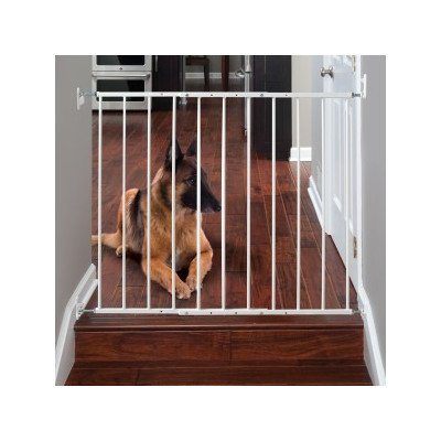 Command Pet Wall Mounted Gate, 31″ H/24.75″-42.5″, White For Sale