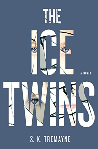 The Ice Twins: A Novel