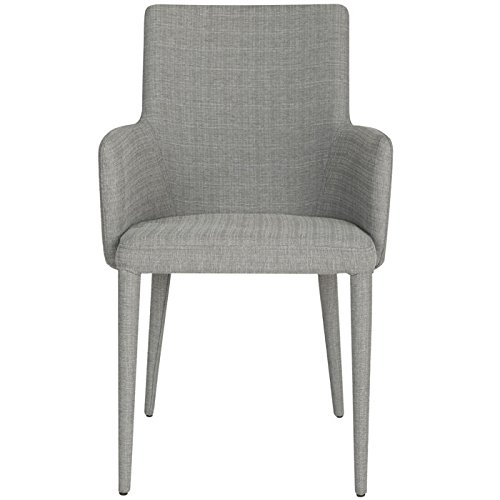 Safavieh Home Collection Summerset Mid-Century Modern Grey Linen Arm Chair