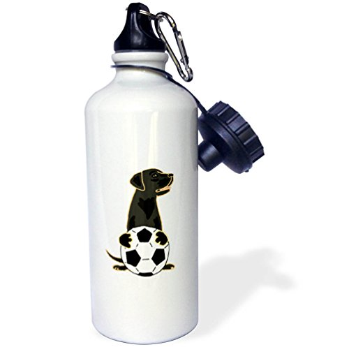 (3dRose All Smiles Art Sports and Hobbies - Funny Cute Black Labrador Retriever Dog Playing Soccer - 21 oz Sports Water Bottle (wb_255773_1))
