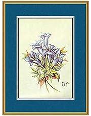 برواز ورد او زهور 30-40سم بالصورة و الزجاج
