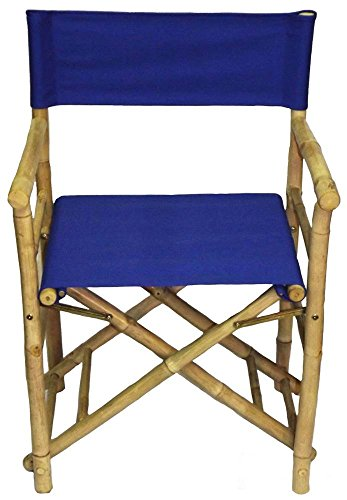 Director-Low-Chair-in-Blue-Set-of-2
