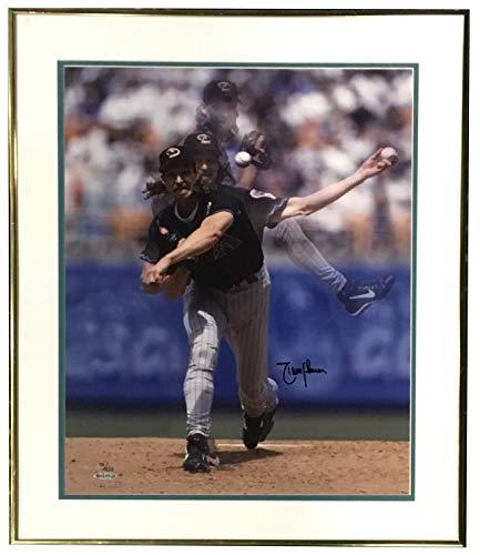 (Randy Johnson Diamondbacks Autographed Signed 16x20 Framed Photo Autograph HOF Uda Authentic /200)