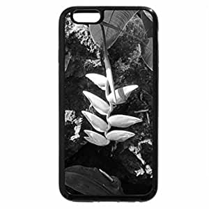 iPhone 6S Plus Case, iPhone 6 Plus Case (Black & White) - A day at the Garden 11