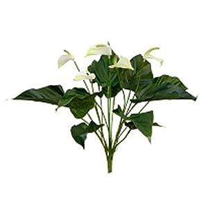 """16"""" Anthurium Bush Wedding Flowers Home Party Decor 41"""